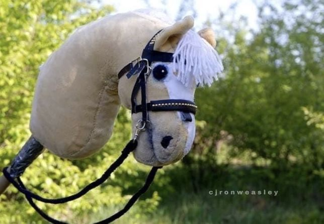 hobby horse/konik na patyku