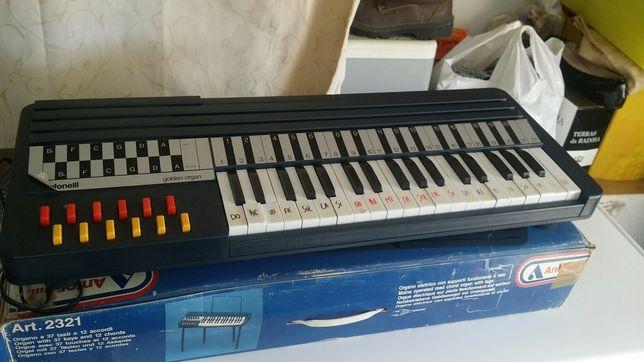 Órgão musical