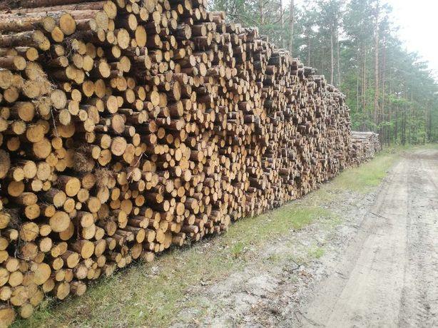 Drewno kominkowe drzewo opałowe Białołęka, Kobyłka, Ząbki, Radzymin