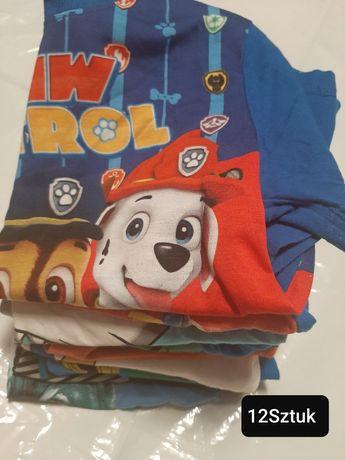 12 T-shirtów  z motywami,mniej niż 5zł za szt.