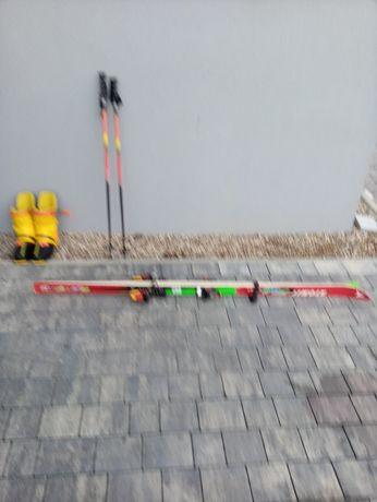 Sprzęt sportowy narty