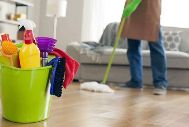 Sou Empregada doméstica