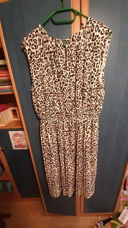 Sukienka h&m rozmiar m panterka