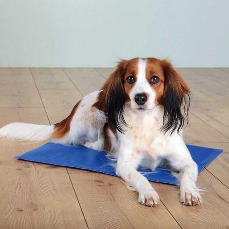 Mata chłodząca dla psa lub kota TRIXIE rozmiar 40cm x 30cm