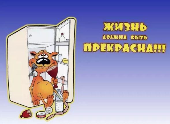 Ремонт холодильников морозильных камер на дому СРОЧНО В ДЕНЬ ЗАЯВКИ!