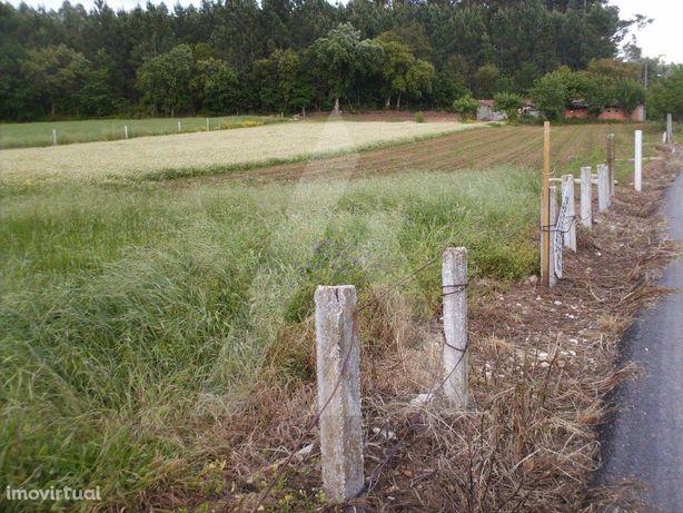 Terreno Venda Anadia
