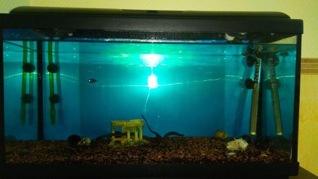 Срочно продаю шикарный аквариум на 112 литров