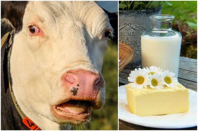 Mleko eko naturalne