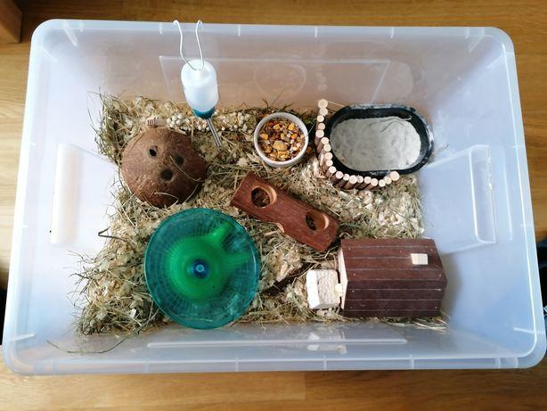 Klatka terrarium dla chomika
