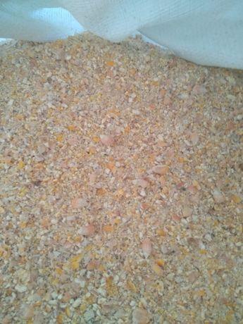 Kukurydza gnieciona, nie mielona, worki, lub luzem.