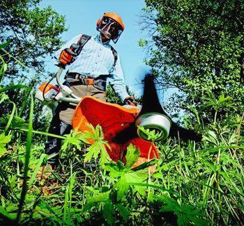 Limpeza de Terrenos/Desmatação