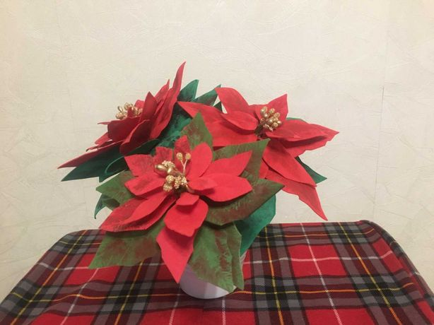 Продам пуансетию рождественская звезда
