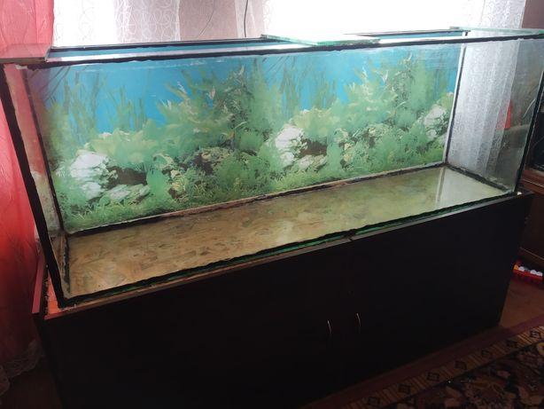 Продам аквариум с тумбой на 400литров.