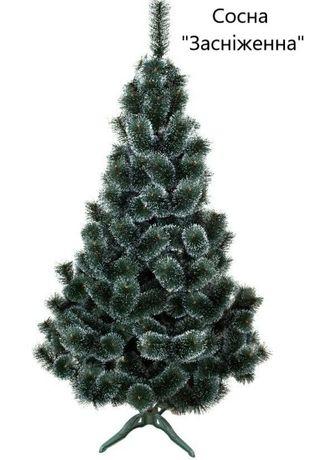 Сосна новорічна, 4 види, розмір 0.75-2.50 м