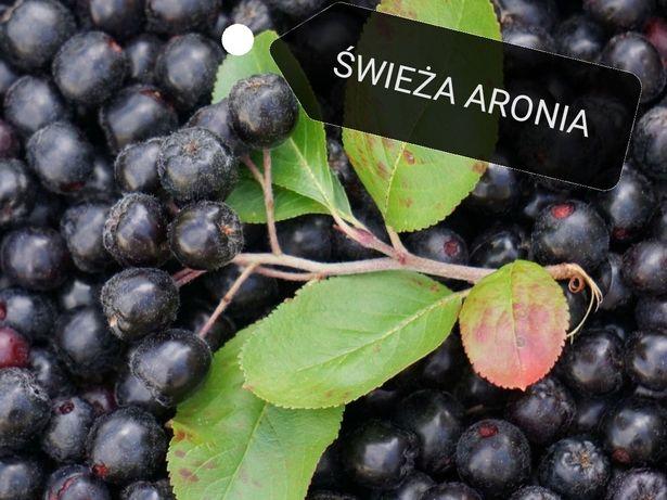 Wysyłka kurierem na terenie całej polski - świeże owoce aronii EKO