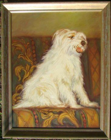 Pies PORTRET PSA OBRAZ OLEJNY z ramą, sygnowany 50 x 65cm