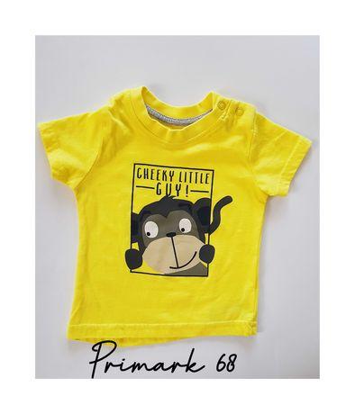 Primark T-shirt koszulka 68