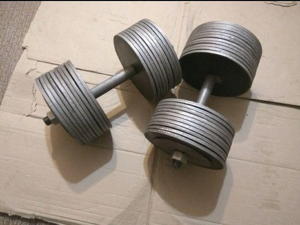Гантели наборные 2 шт по 40 кг