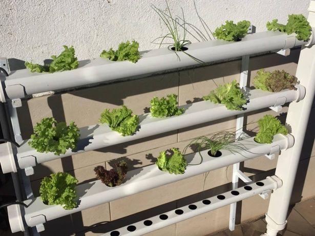 Hidroponia - Kit Vertical para 40 Plantas - Loja Oficial