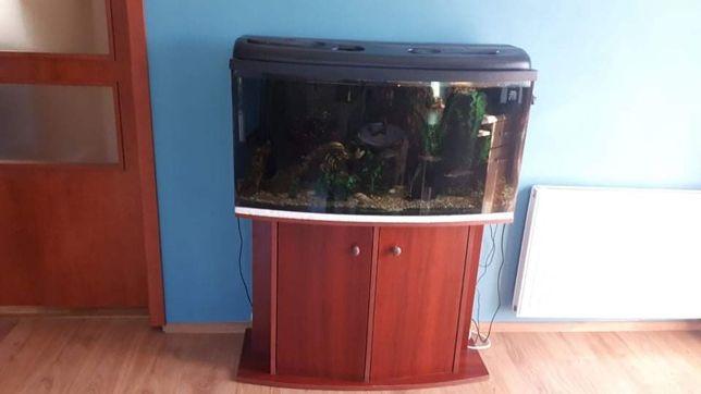 Sprzedam zestaw akwariowy 100x50x37