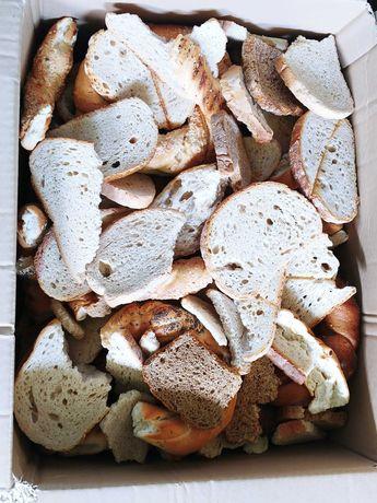 Suchy chleb 100kg przesyłka 5zł Karma dla zwierząt Pieczywo czerstwe