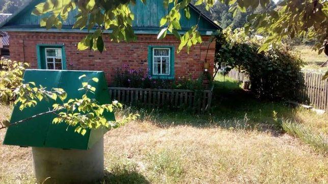 Продам кирпичный дом в с. Ставровка, Иванковский р-н, Киевской области