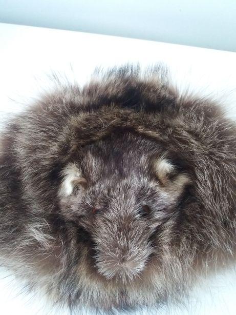 Oryginalna czapka z lisa