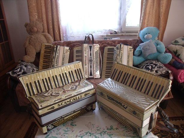 Uwaga kolekcjonerzy...Wyprzedarz kolekcji harmoni i akordeonów