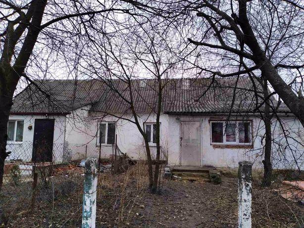 Будинок продажа в смт Брусилів