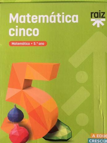 Matemática cinco, Matemática 5ªano - Dossiê do professor