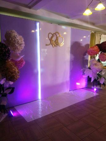 Фотозона, арка, квіти великі ростові