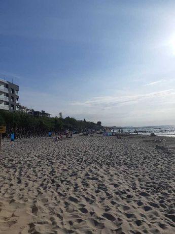Biznes na plaży Mielno Promenada Miejsce Dzierżawa Plac Wynajmę Mielno