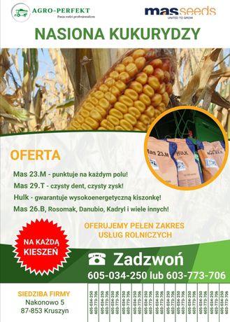 Nasiona kukurydzy MAS 23.M 22.R 29.T 26.B Hulk Danubio Kadryl Rosomak