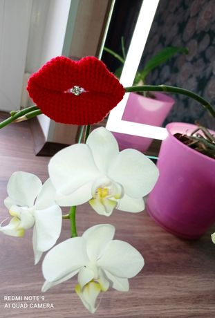 Валентинка, губи, подарунок на 14 лютого
