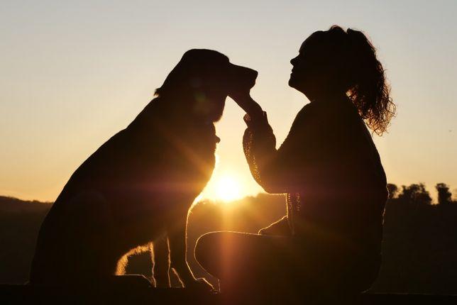Hotel dla psów - Mazury -  przyjmujemy na sierpień i wrzesień