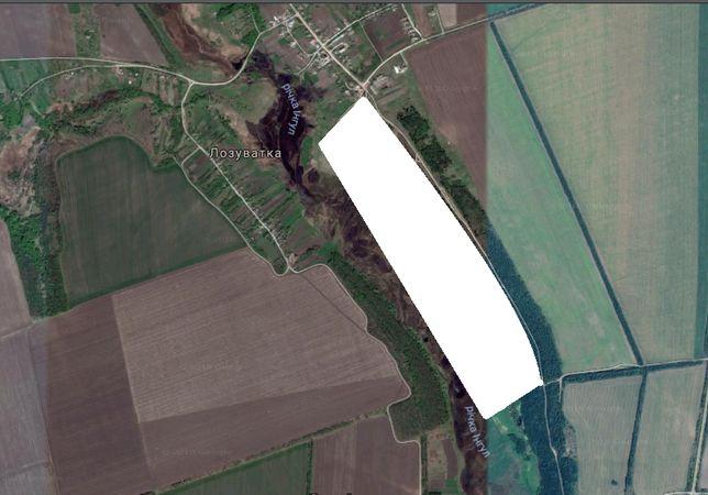 Продается земельный участок в с.Лозоватка в Кировоградской обл