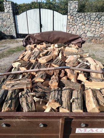Продам дрова твердых пород из акации дуба и глодицы