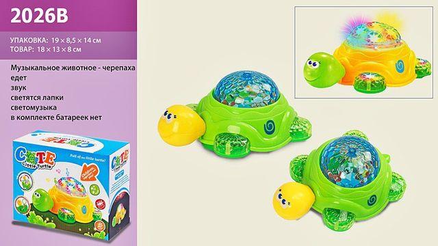ХИТ!музыкальная черепашка!игрушки с проектором,музыкальные игрушки