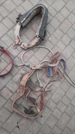 продам для пони на карету