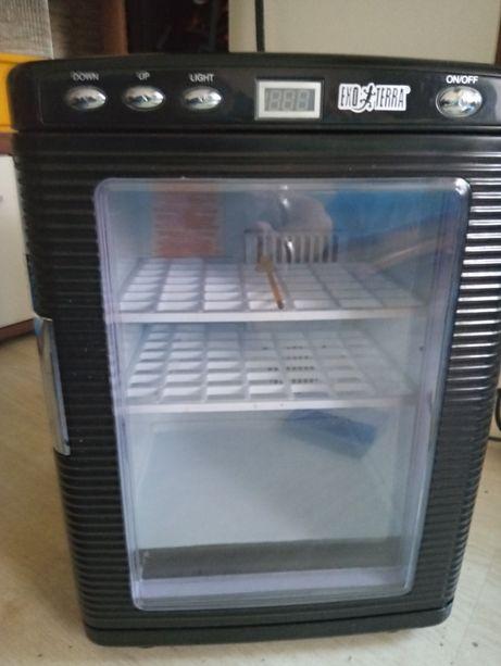 Inkubator EcoTerra Gady i płazy..