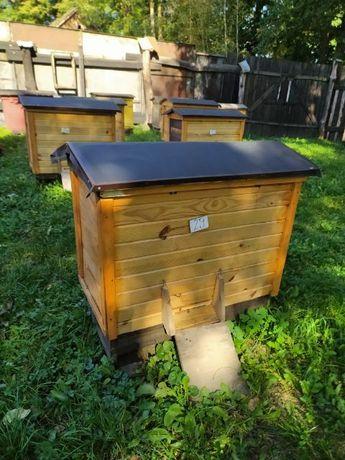 Rodziny pszczele w ulach warszawskich