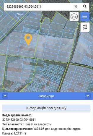 Участок 1.21 га - с.Княжичи, Киево-Святошинский рн
