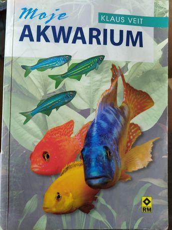 Moje akwarium - poradnik