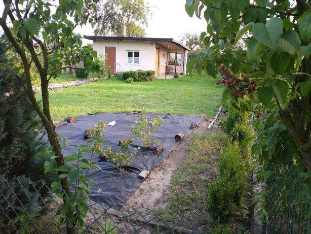 Ogródek działkowy Bytom Stolarzowice