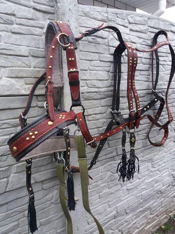 Упряж збруя для лошади коня кобылы жеребца