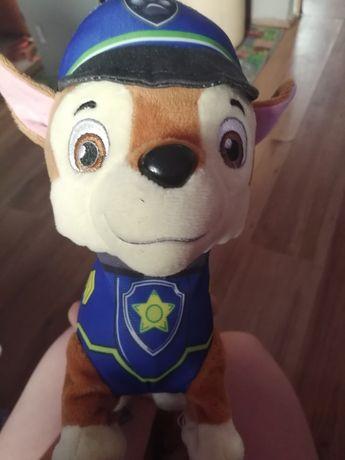 Chase z psiego patrolu