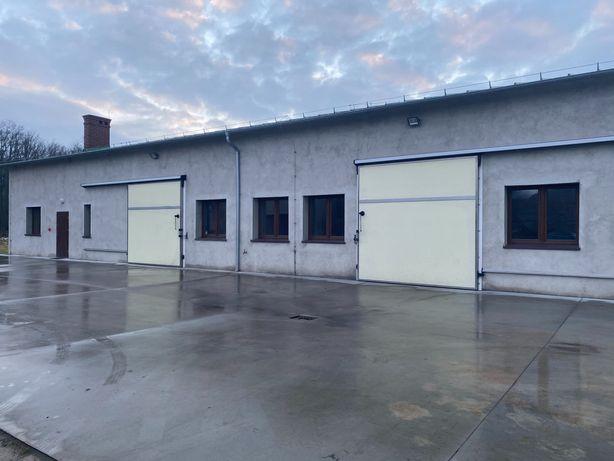 Hala produkcyjno - magazynowa z mroźnią, budynek przemysłowy