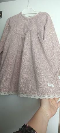 Sukieneczka  newbie