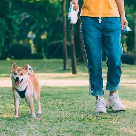 Поводок для собак Xiaomi Jordan Judy Pet Retractable Rope