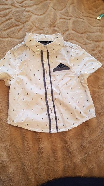 Koszula chłopięca, krótki rekaw